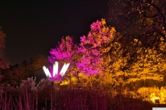 Maximilian-Park-Herbstleuchten-2018-DSC_7326