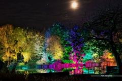 Maxipark-Herbstleuchten-2018-mh-photografie-02-DSC_7315
