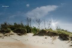 Sanddüne-mh-photografie-16