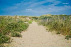 Sandweg-Küste-mh-photografie-17