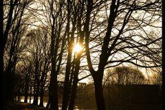 Gelsenkirchen-Kanal-Sonnenuntergang-DSC_6555-mh-photografie-b